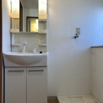 洗濯機置場の右側には柔軟剤などが置ける棚があります。