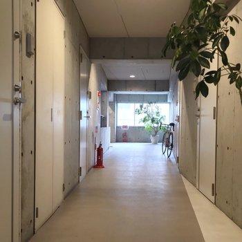 共用廊下もコンクリート打ちっぱなしでクールでした。