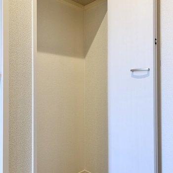 そしてトイレの前にも物入があります。スーツケースなどはこちらへ。