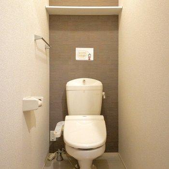 階段脇には棚付きのトイレ、広がりがありますよ~。