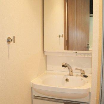 洗面台もピカピカ独立(※写真は5階の同間取り別部屋のものです)