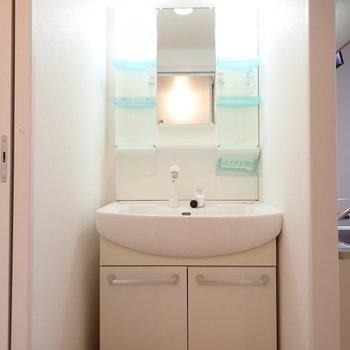 洗面台はずっしりと。収納もたくさんあるので使い勝手がいいですね。
