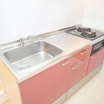 シンクも広さがあって洗い物がしやすいです!