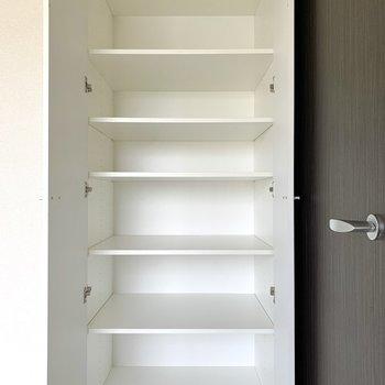 こちらは物入。本棚としても活用できそう。※写真は4階の同間取り別部屋のものです