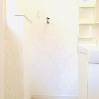 そのお隣には洗濯機置場。左上部の棚に柔軟剤とか並べられそう!