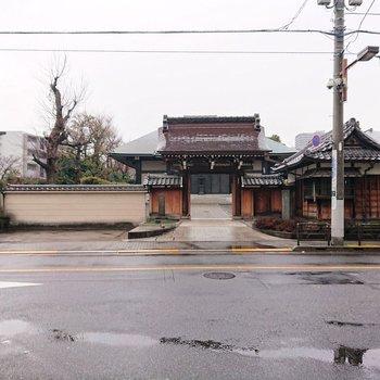 西蔵院というお寺が近くにあります。
