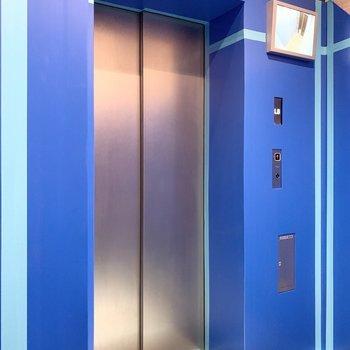 エレベーターは防犯モニターが付いています。※写真は養生時のものです