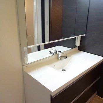 洗面台も広っ!!!(※写真は4階の同間取り別部屋のものです)