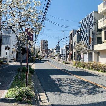 お部屋までは交番もある大通りを通ります。駅チカなのにお部屋の周りは閑静な住宅街。
