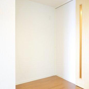 対面側にはキッチン家電用のスペースもしっかりあります。(※写真は5階の同間取り別部屋のものです)