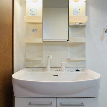 大きなボウルが特徴的な洗面所。収納もたくさんあるので、朝用と夜用で場所も分けられそう。