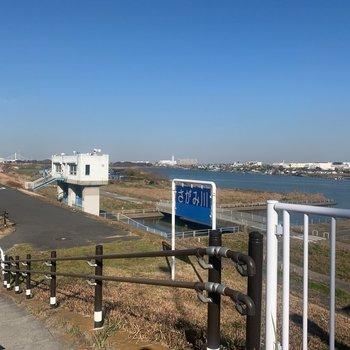 お部屋は相模川近く。