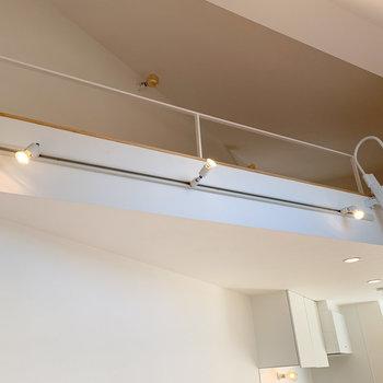 【ディテール】ライティングレールで光の角度を調節。