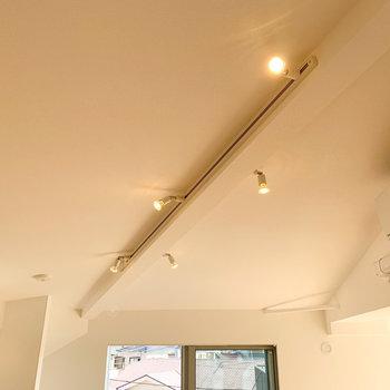 【ディテール】ライティングレールで光の角度の調節を。