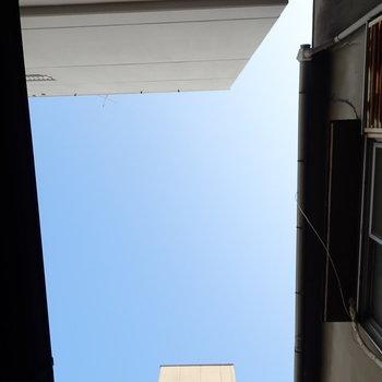 上には青空がやや見えます。光は直接入りこまなさそう。
