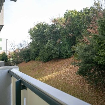 南側は小さな緑の丘に面しています。