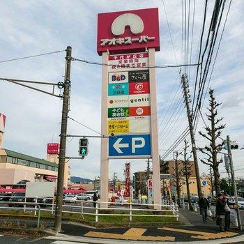 こちらはバス通り。大きなスーパーなどが集まり便利ですよ。