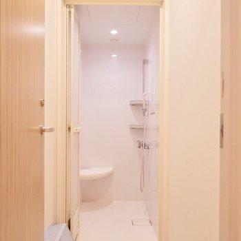 【共用部】各シャワールーム、こちらのタイプがいくつも並んでいます。