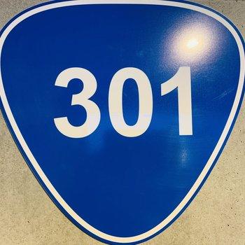 国道301号線