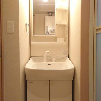 洗面台は独立式。シャワーヘッドは伸ばすことができる◎
