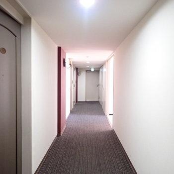 共用部】ホテルっぽい廊下です。