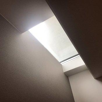 天窓からやわらかい光が入ってきます