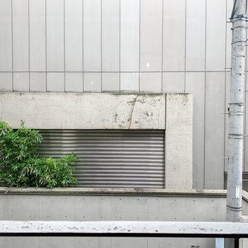 眺望はご近所さんの壁。人目を気にせず、洗濯物が干せそうです。