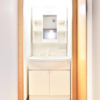 洗面台は使いやすい棚付きのもの。トイレはその右手に。