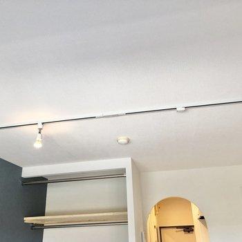 天井にはライティングレールが走ります。