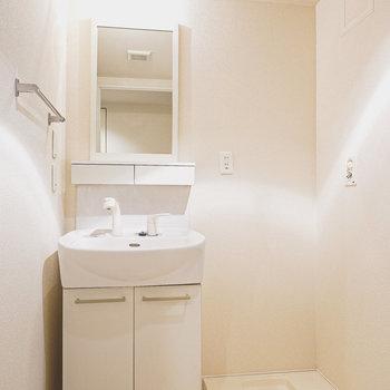 鏡が分離された独立洗面台。その隣には洗濯パン。