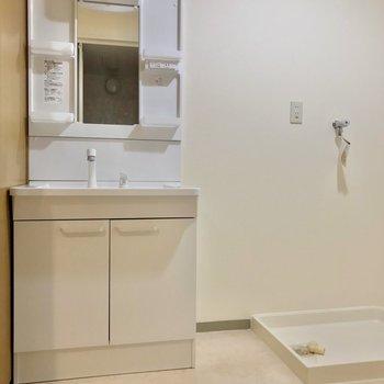 脱衣所にはシャンプードレッサーと、ドラム式のものも置けそうな洗濯パン。
