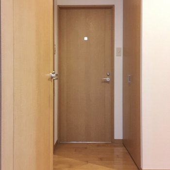 洋室出ると扉が3つ。