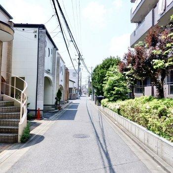 建物前の通り。周辺は閑静な住宅街です。