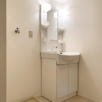 シャンプードレッサーと室内洗濯機置場。