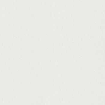 【イメージ】1階の玄関側のお部屋と廊下、2階のお部屋はスタイリッシュな白い床に。
