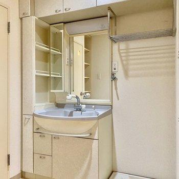 洗面台と洗濯機置場。ゆったりしたスペースですね。