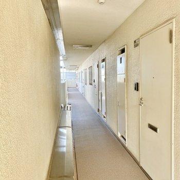 玄関前共用部。お部屋がいっぱい。