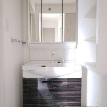 鏡の裏には歯ブラシなどの収納もできるスグレモノ。(※写真は3階の同間取り別部屋のものです)