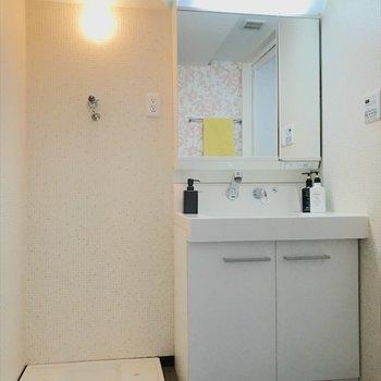 洗面台のおとなりには洗濯機置き場。