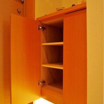 あんまりたくさんは入らないかも。下のスペースも使えます!※写真は同タイプの別室。