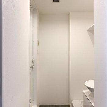さて、気になるサニタリールームへ。※写真は前回募集時のものです