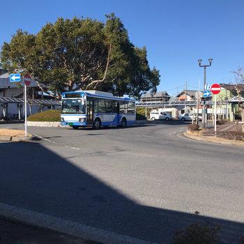 駅前にはバスターミナルがあるので、多方面に出かけられますよ。