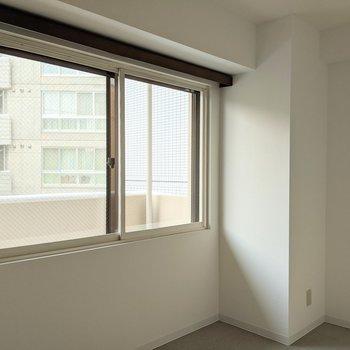 【5帖洋室】窓は東向き。