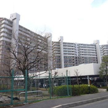 エステ・スクエア本厚木参番館