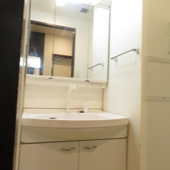 鏡の後ろは収納たっぷり。※写真は2階同間取り・別部屋のものです