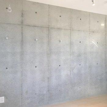 1面がコンクリートむき出しの壁。この無機質感が堪らない。