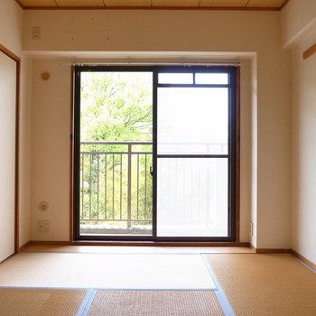 【和室】あたたかい雰囲気の和室です。裏に竹林も広がっています。