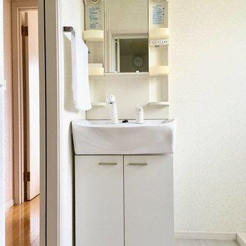 洗面台は普通サイズ。壁にはタオル掛け付きです。(※写真は別棟反転間取り別部屋、モデルルームのものです)