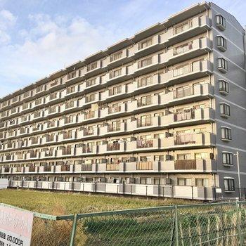 落ち着いたエリアにある大きなマンション。
