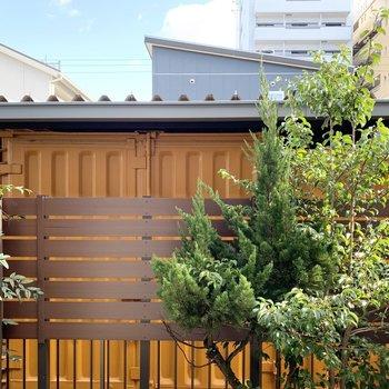眺望はお庭の木とお隣のトランクルーム。